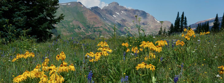Summer Activities In The Colorado Mountains