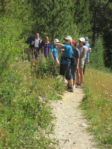 Hiking Tours in Copper Mountain