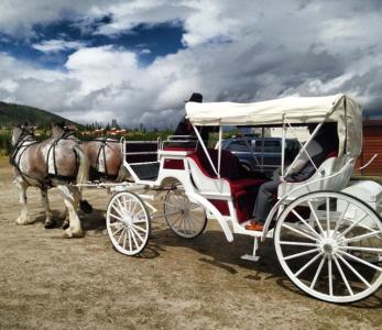 Hayrides & Carriage Rides in Vail / Beaver Creek