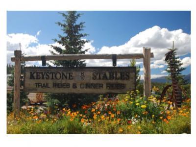 Keystone Stables in Summer
